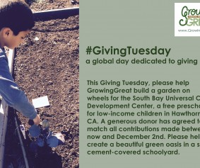 giving tuesday 7D