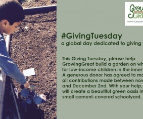 giving tuesday 8D